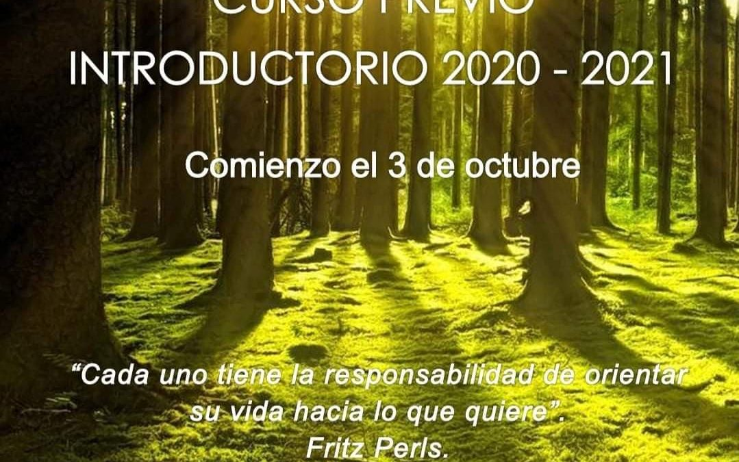 Curso Previo Introductorio 2020